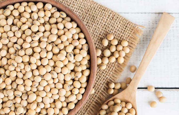 Soybeans, Mature Seeds: TOP 10 HEALTHY FOODS FOR WOMEN