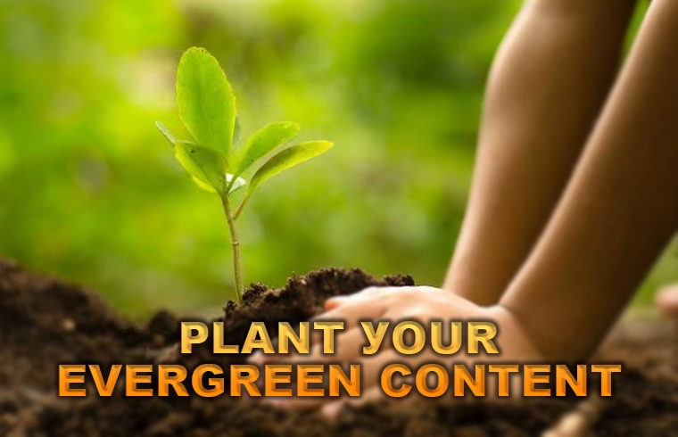 Plant your evergreen content