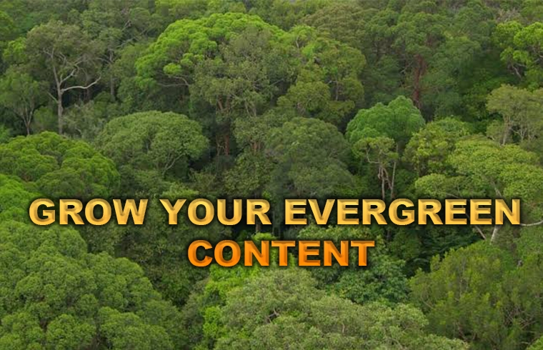 Grow your evergreen content